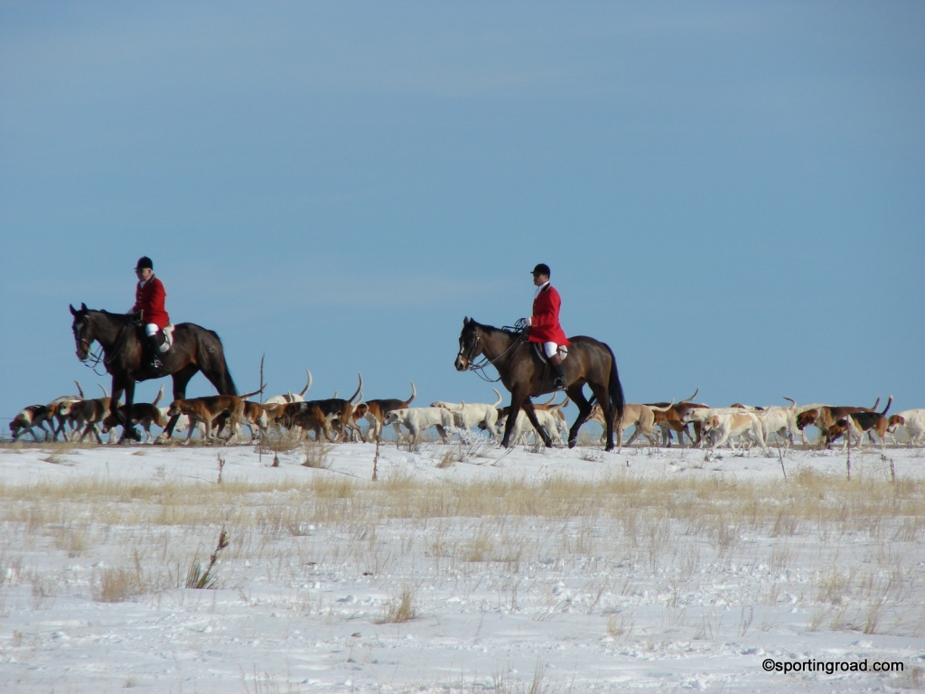 Winter Conditions Hunting Shoeing Your Horse with Borium